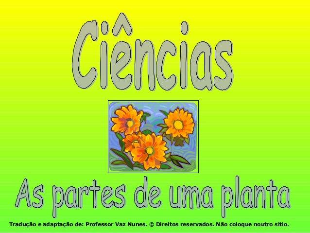 Tradução e adaptação de: Professor Vaz Nunes. © Direitos reservados. Não coloque noutro sítio.