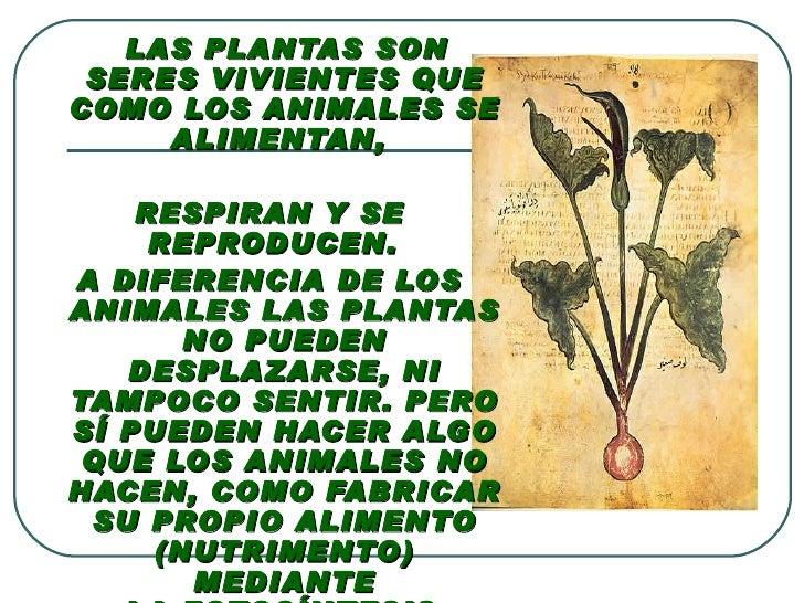 Plantas plantas terrestres y acuaticas - Como se aparean los elefantes ...