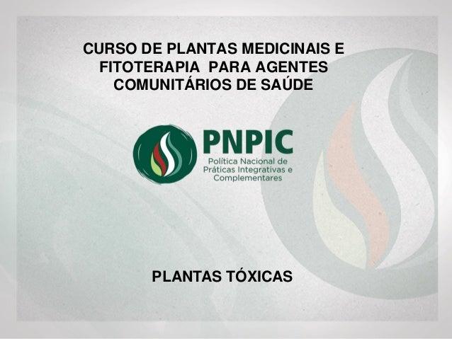 CURSO DE PLANTAS MEDICINAIS E FITOTERAPIA PARA AGENTES COMUNITÁRIOS DE SAÚDE PLANTAS TÓXICAS