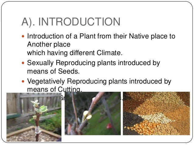 A). INTRODUCTION Introduction of a Plant from their Native place to  Another place  which having different Climate. Sexu...