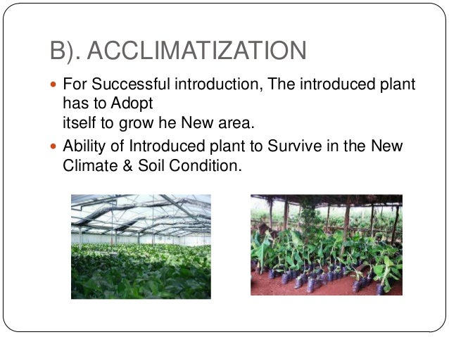 B). ACCLIMATIZATION For Successful introduction, The introduced plant  has to Adopt  itself to grow he New area. Ability...