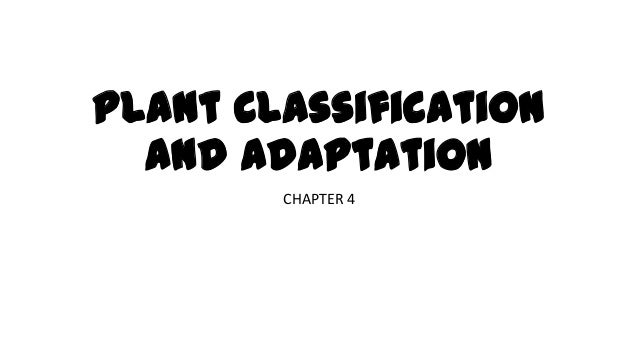 Plant Classification and Adaptation CHAPTER 4