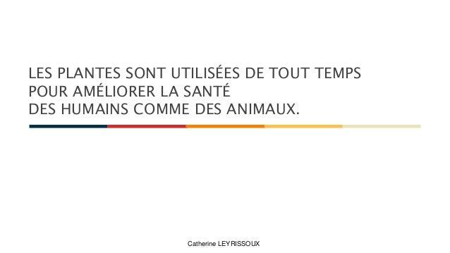 LES PLANTES SONT UTILISÉES DE TOUT TEMPS POUR AMÉLIORER LA SANTÉ DES HUMAINS COMME DES ANIMAUX. Catherine LEYRISSOUX