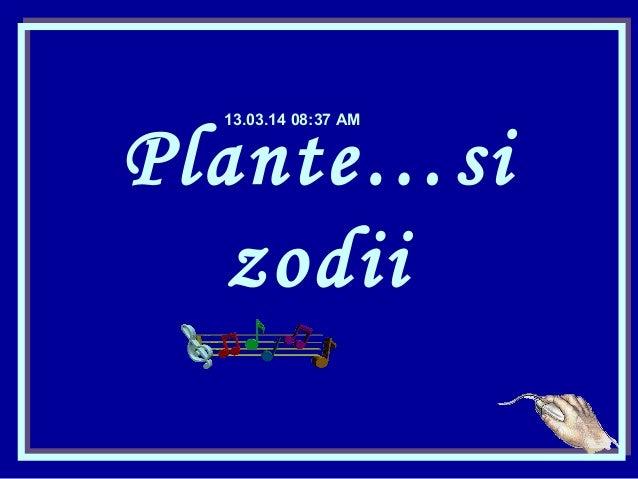 Plante…si zodii 13.03.14 08:37 AM