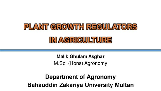 PLANT GROWTH REGULATORS IN AGRICULTURE Malik Ghulam Asghar M.Sc. (Hons) Agronomy Department of Agronomy Bahauddin Zakariya...