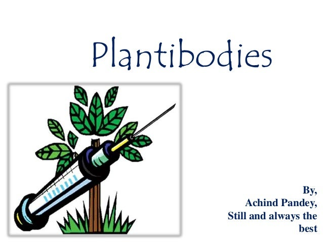 Plantibodies By, Achind Pandey, Still and always the best