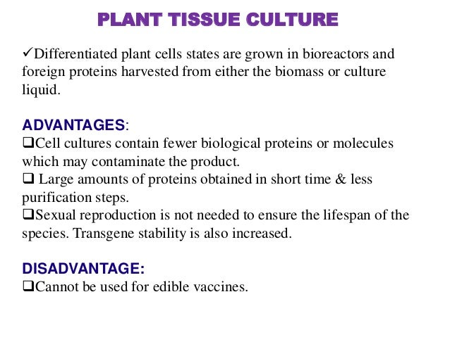 advantage and disadvantage of animal cell tissue culture Read this article to learn about the fundamentals, facilities, aseptic conditions, advantages, disadvantages of animal cell culture and also about the risks & safety regulations in a tissue culture laboratory introduction to animal cell culture .
