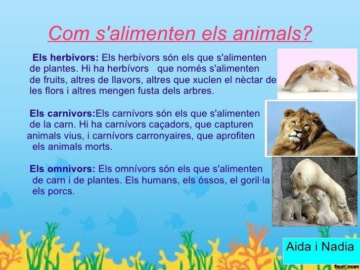 Medi on es desplacen    Els animals es poden desplaçar per      aigua, terra o aire.    Els que es desplacen per l´aigua e...