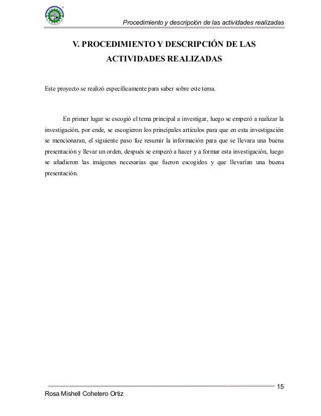 Plantilla informe-tecnico LA- Rosa Mishell