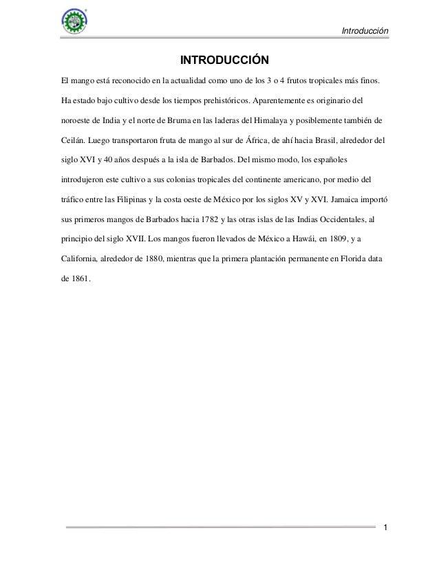 Plantilla informe tecnico ige