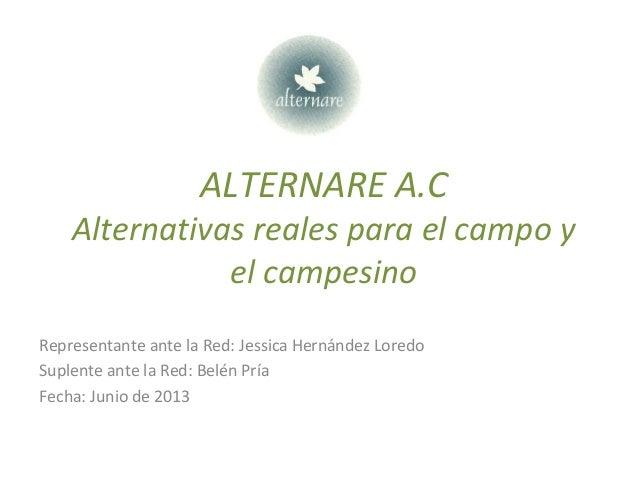 ALTERNARE A.C Alternativas reales para el campo y el campesino Representante ante la Red: Jessica Hernández Loredo Suplent...