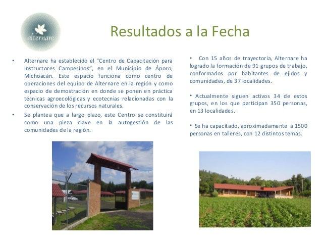 """Resultados a la Fecha • Alternare ha establecido el """"Centro de Capacitación para Instructores Campesinos"""", en el Municipio..."""
