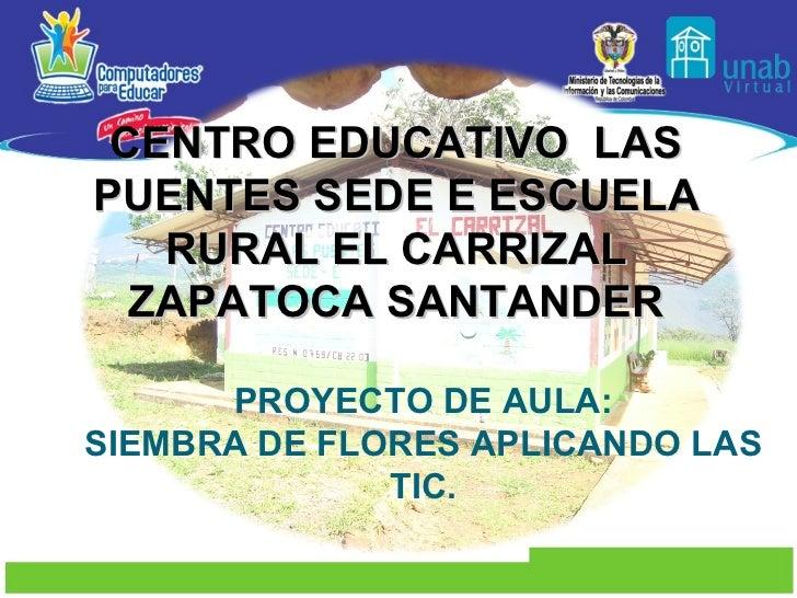 PROYECTO DE AULA: SIEMBRA DE FLORES APLICANDO LAS TIC. CENTRO EDUCATIVO  LAS PUENTES SEDE E ESCUELA RURAL EL CARRIZAL ZAPA...