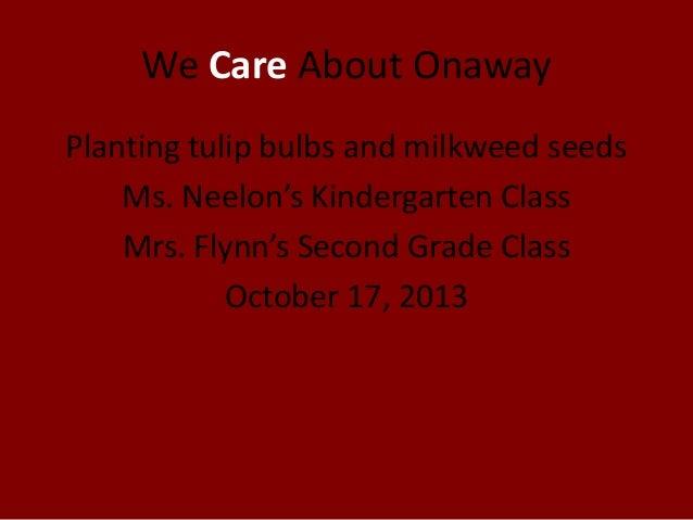 We Care About Onaway Planting tulip bulbs and milkweed seeds Ms. Neelon's Kindergarten Class Mrs. Flynn's Second Grade Cla...