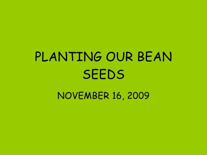 PLANTING OUR BEAN SEEDS NOVEMBER 16, 2009