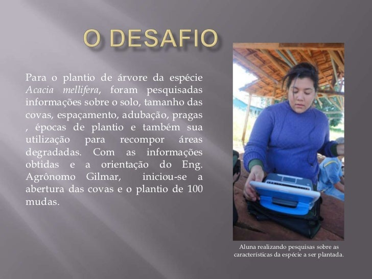O DESAFIO <br />Para o plantio de árvore da espécie Acacia mellifera, foram pesquisadas informações sobre o solo, tamanho ...