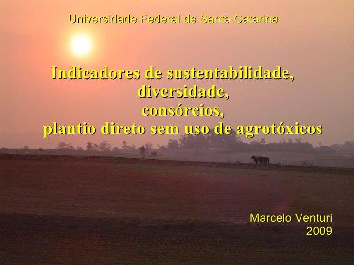 Indicadores de sustentabilidade,  diversidade, consórcios, plantio direto sem uso de agrotóxicos Universidade Federal de S...