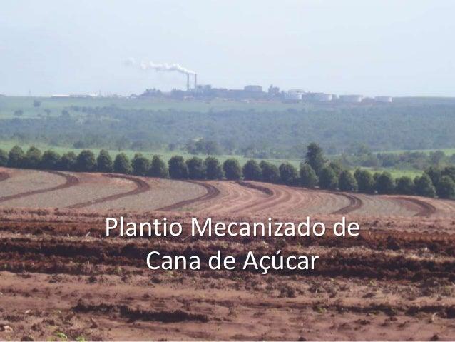 Plantio Mecanizado de Cana de Açúcar