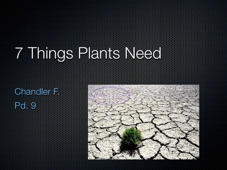 7 Things Plants Need  Chandler F. Pd. 9
