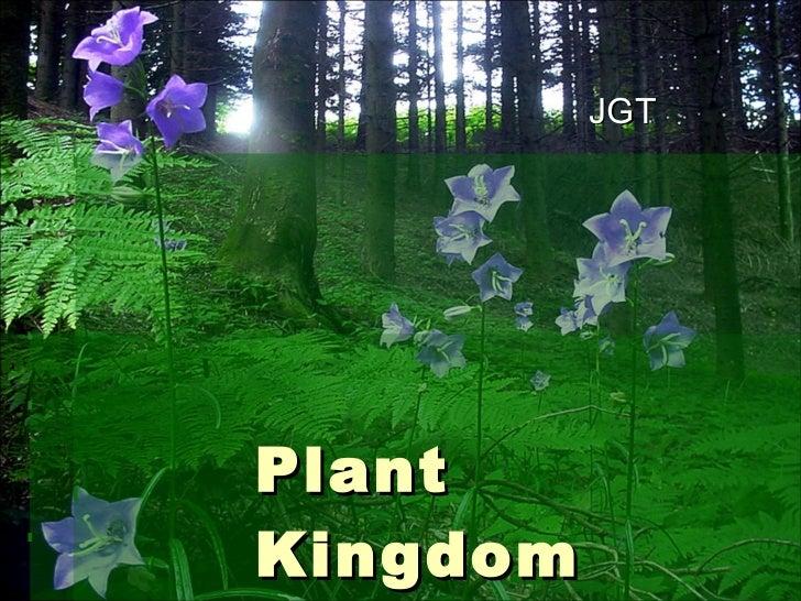 Plant Kingdom JGT
