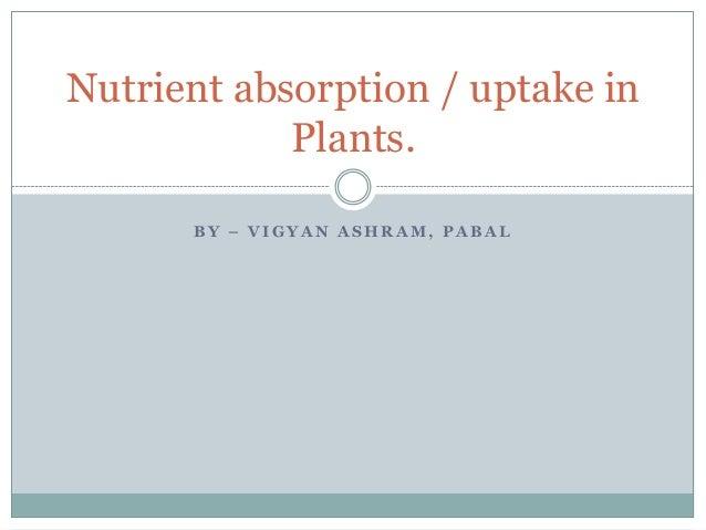 B Y – V I G Y A N A S H R A M , P A B A L Nutrient absorption / uptake in Plants.