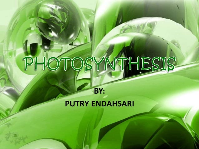 BY: PUTRY ENDAHSARI