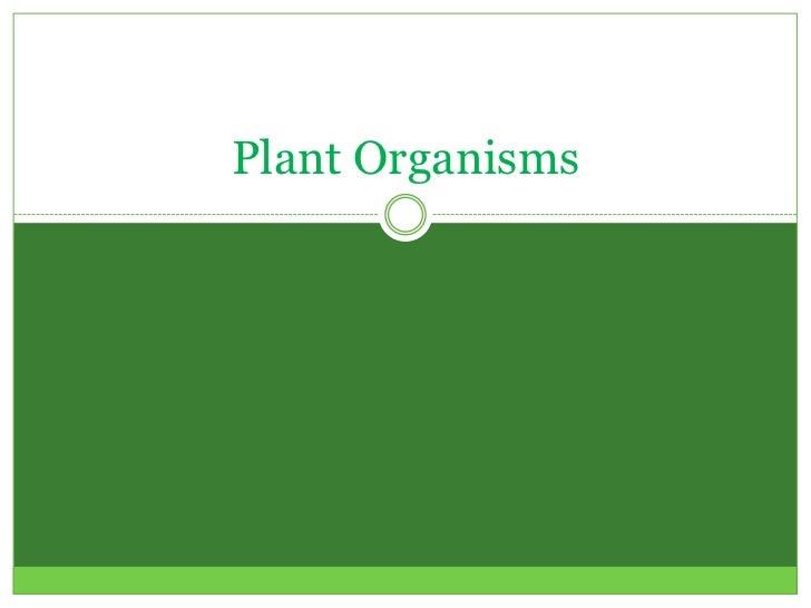 Plant Organisms