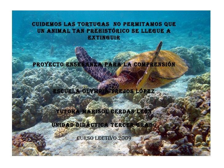 Cuidemos las tortugas  no permitamos que un animal tan prehistórico se llegue a extinguir Proyecto Enseñanza para la compr...