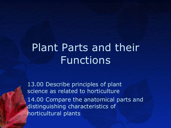 Plant Parts and their Functions 13.00 Describe principles of plant science as related to horticulture 14.00 Compare the an...