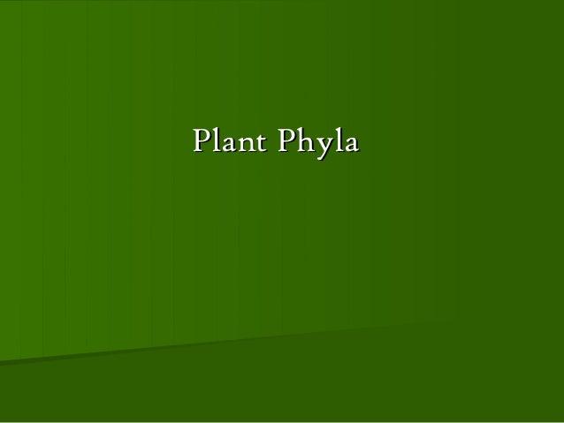 Plant Phyla