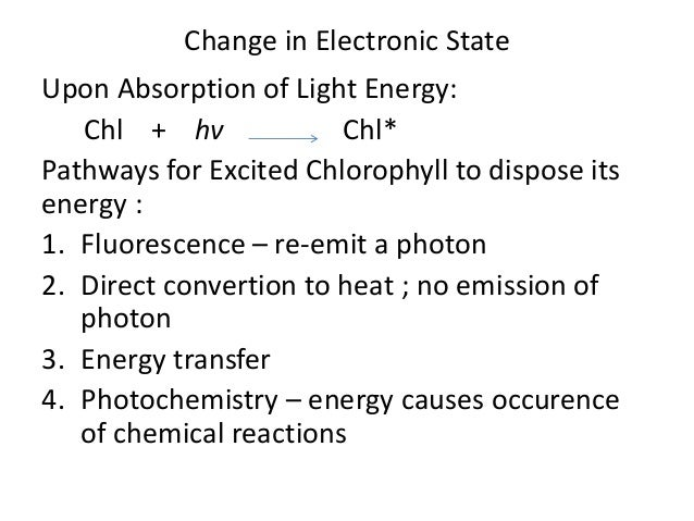First movie of energy transfer in photosynthesis solves decades