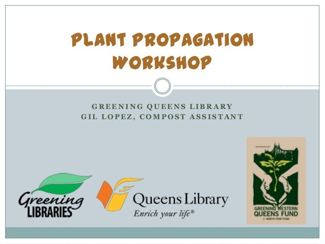 Plant Propagation Workshop GREENING QUEENS LIBRARY GIL LOPEZ, COMPOST ASSISTANT