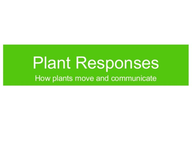 Plant Responses How plants move and communicate