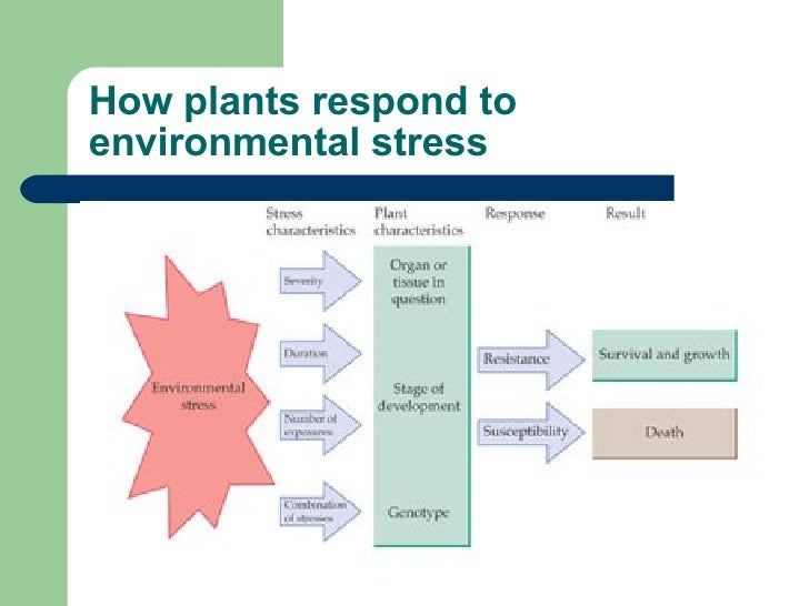 our responses to environments will not Responses to environmental effects the conditions in different environments vary considerably and affect an organism's ability to maintain a relatively constant internal environment organisms have combinations of structural, physiological (functional) and behavioural adaptations or features which.