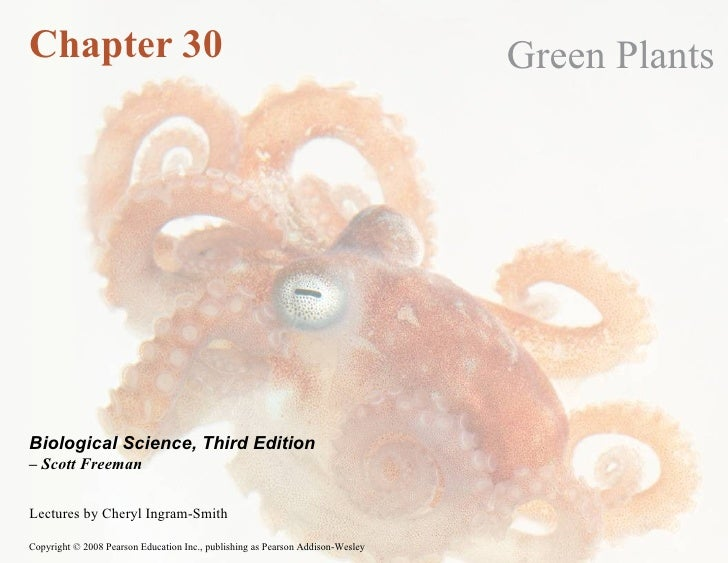 Chapter 30 Green Plants Lectures by Cheryl Ingram-Smith Biological Science, Third Edition –  Scott Freeman
