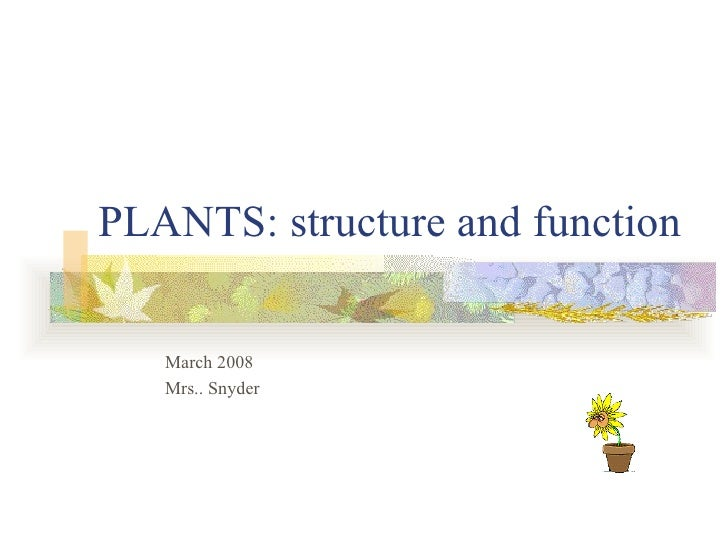PLANTS: structure and function   March 2008   Mrs.. Snyder