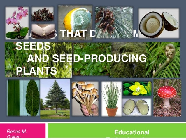 PLANTS THAT DO NOT MAKE   SEEDS     AND SEED-PRODUCING   PLANTSRenee M.          EducationalGuirao