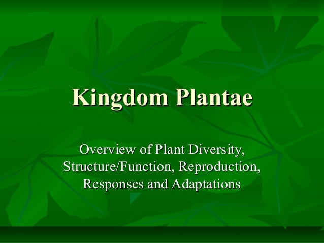 Kingdom Plantae Overview of Plant Diversity, Structure/Function, Reproduction, Responses and Adaptations