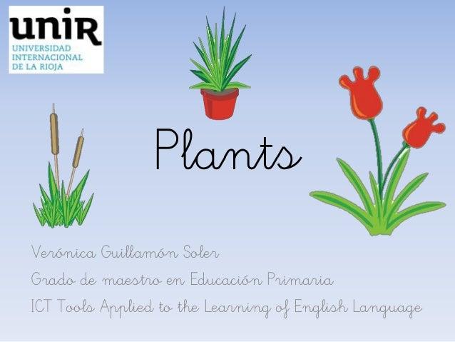 Plants Verónica Guillamón Soler Grado de maestro en Educación Primaria ICT Tools Applied to the Learning of English Langua...