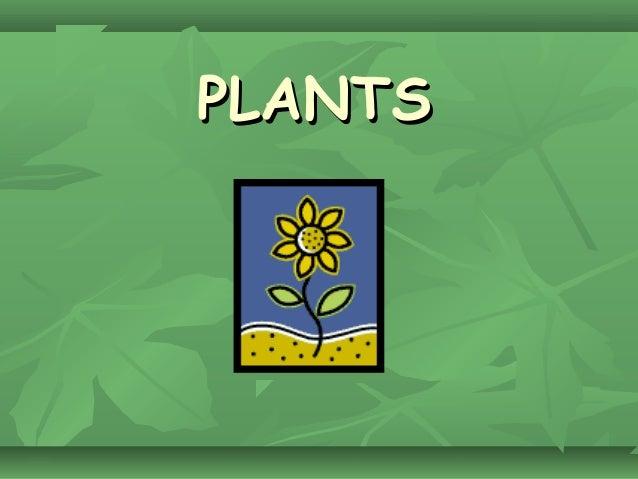 PLANTSPLANTS