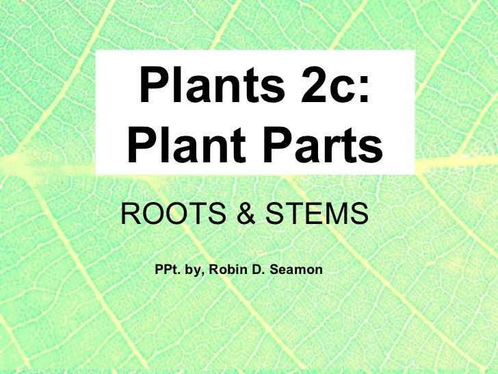 Plants 2c:Plant PartsROOTS & STEMS PPt. by, Robin D. Seamon