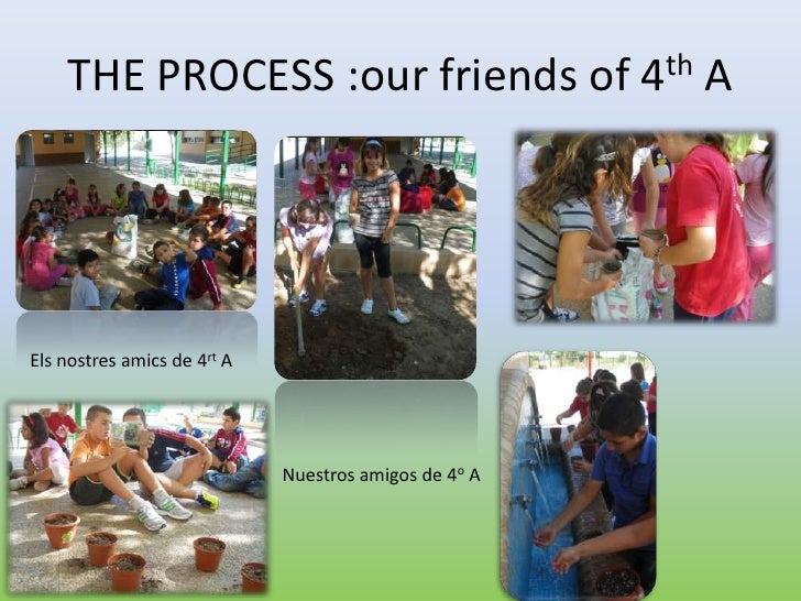 THE PROCESS :our friends of 4th AEls nostres amics de 4rt A                             Nuestros amigos de 4o A