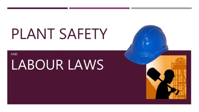 PLANT SAFETY AND LABOUR LAWS