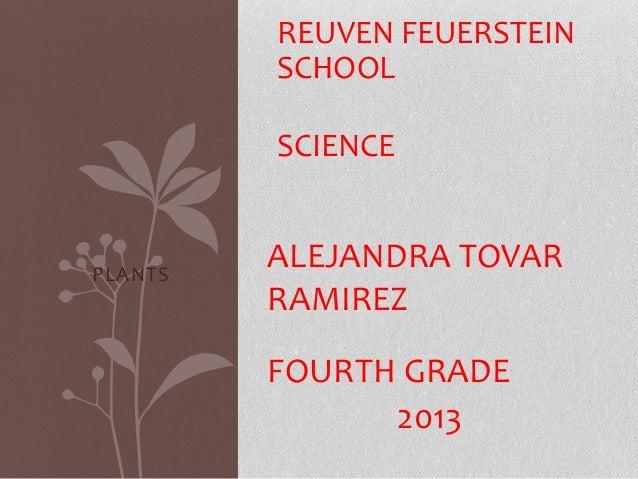 REUVEN FEUERSTEIN SCHOOL SCIENCE  PLANTS  ALEJANDRA TOVAR RAMIREZ FOURTH GRADE 2013