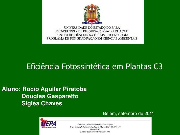 Eficiência Fotossintética em Plantas C3 <br />Aluno: Rocío Aguilar Piratoba<br />            Douglas Gasparetto<br />     ...