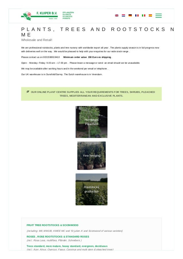 Plants & Trees Nursery Near Me | Trees and Shrubs For Sale | Rootstoc…