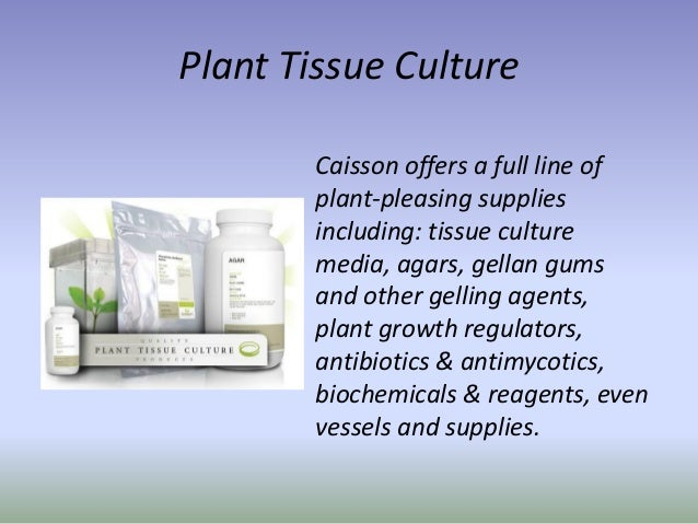 Plant Tissue and Animal Cell Culture