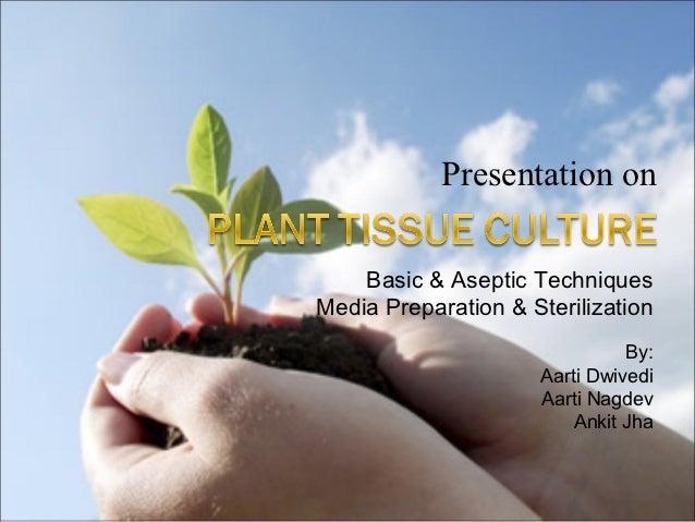Plant tissue culture.