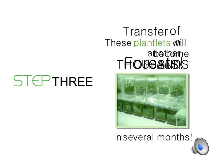 4 Main Steps of Tissue Culture Techniques | Biotechnology