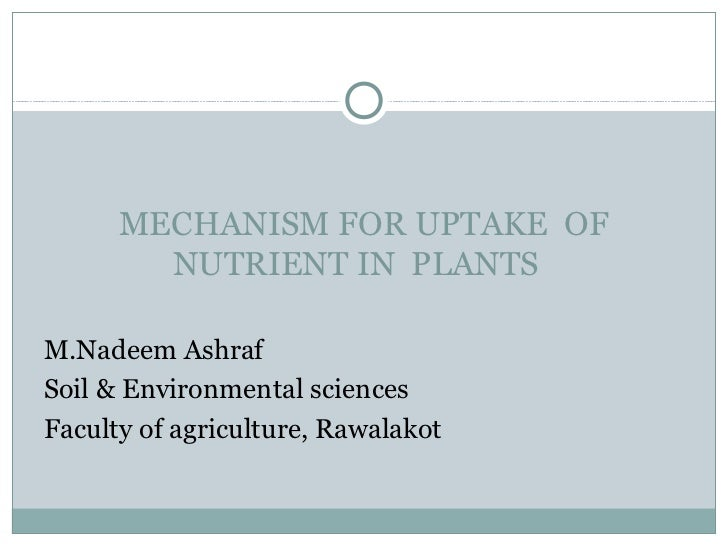 MECHANISM FOR UPTAKE OF        NUTRIENT IN PLANTSM.Nadeem AshrafSoil & Environmental sciencesFaculty of agriculture, Rawal...